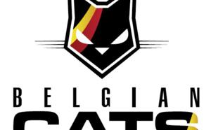 Un nouveau logo pour l'équipe nationale
