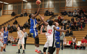 TV - Live - Coupe de Belgique - Kangoeroes Willebroek vs Declercq Stortbeton Waregem